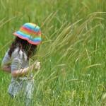 蚊よけの子供の為の対策?アロマで虫除けの作り方!安全なものは?